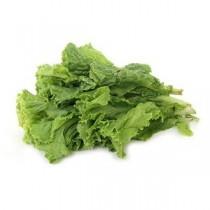 Lettuce - Green, 500 gm