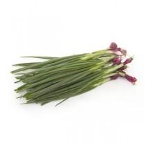 Spring Onion, 1 kg
