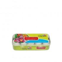 Fevicryl Acrylic Colours Sunflower Kit 10 Shades X 15ml 10 pcs